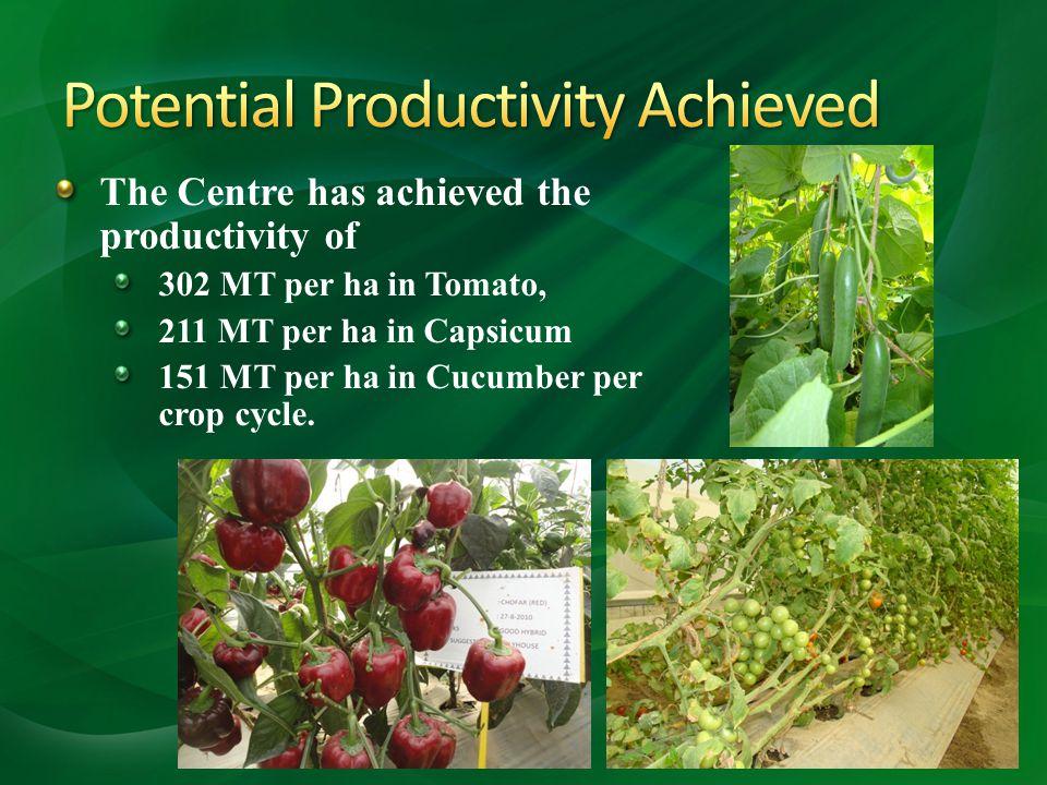 The Centre has achieved the productivity of 302 MT per ha in Tomato, 211 MT per ha in Capsicum 151 MT per ha in Cucumber per crop cycle. 13