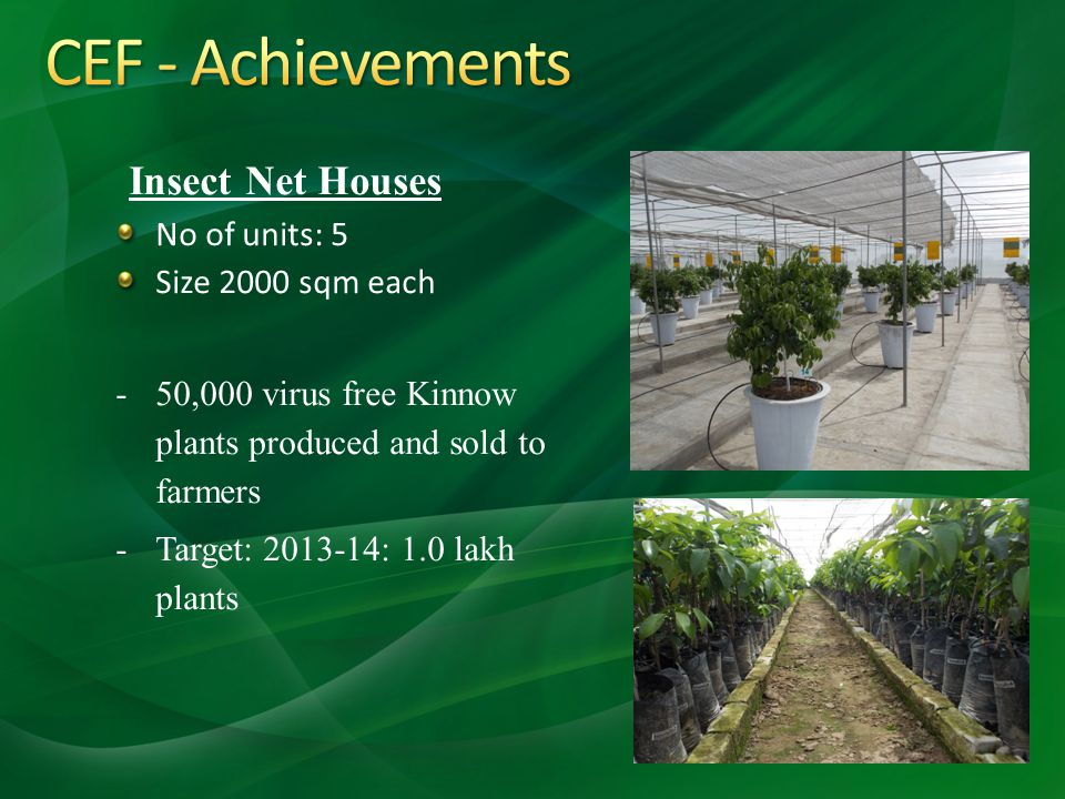 Insect Net Houses No of units: 5 Size 2000 sqm each -50,000 virus free Kinnow plants produced and sold to farmers -Target: 2013-14: 1.0 lakh plants