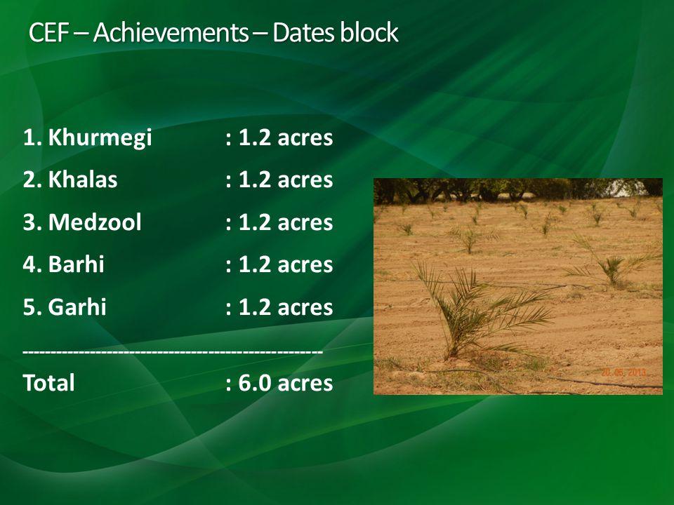 CEF – Achievements – Dates block 1.Khurmegi: 1.2 acres 2.Khalas: 1.2 acres 3.Medzool: 1.2 acres 4.Barhi: 1.2 acres 5.Garhi: 1.2 acres ----------------