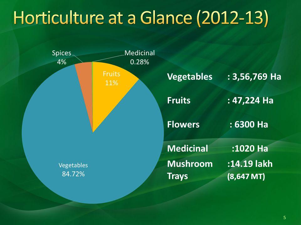 Vegetables: 3,56,769 Ha Fruits : 47,224 Ha Flowers : 6300 Ha Medicinal :1020 Ha Mushroom :14.19 lakh Trays (8,647 MT) 5