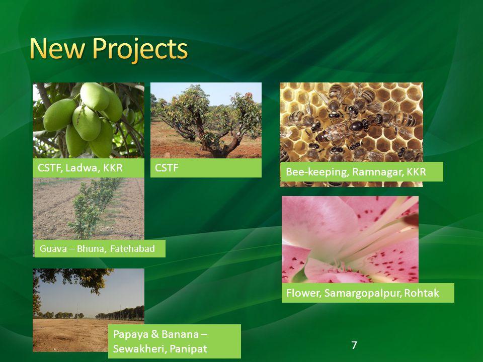7 CSTF, Ladwa, KKRCSTF Bee-keeping, Ramnagar, KKR Flower, Samargopalpur, Rohtak Papaya & Banana – Sewakheri, Panipat Guava – Bhuna, Fatehabad