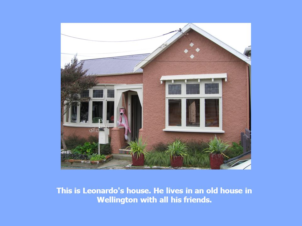 This is Leonardo s house. He lives in an old house in Wellington with all his friends.