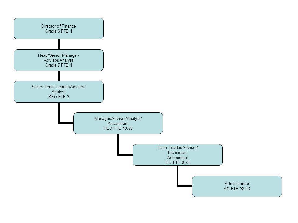 Director of Finance Grade 6 FTE 1 Head/Senior Manager/ Advisor/Analyst Grade 7 FTE 1 Senior Team Leader/Advisor/ Analyst SEO FTE 3 Manager/Advisor/Ana