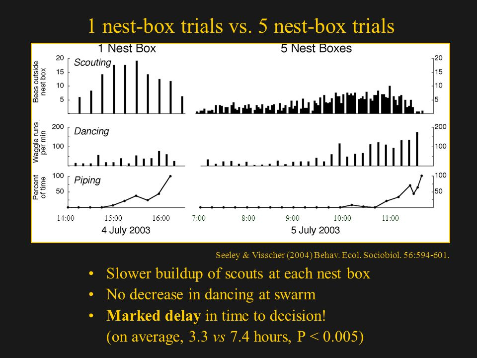 1 nest-box trials vs. 5 nest-box trials Slower buildup of scouts at each nest box No decrease in dancing at swarm Marked delay in time to decision! (o