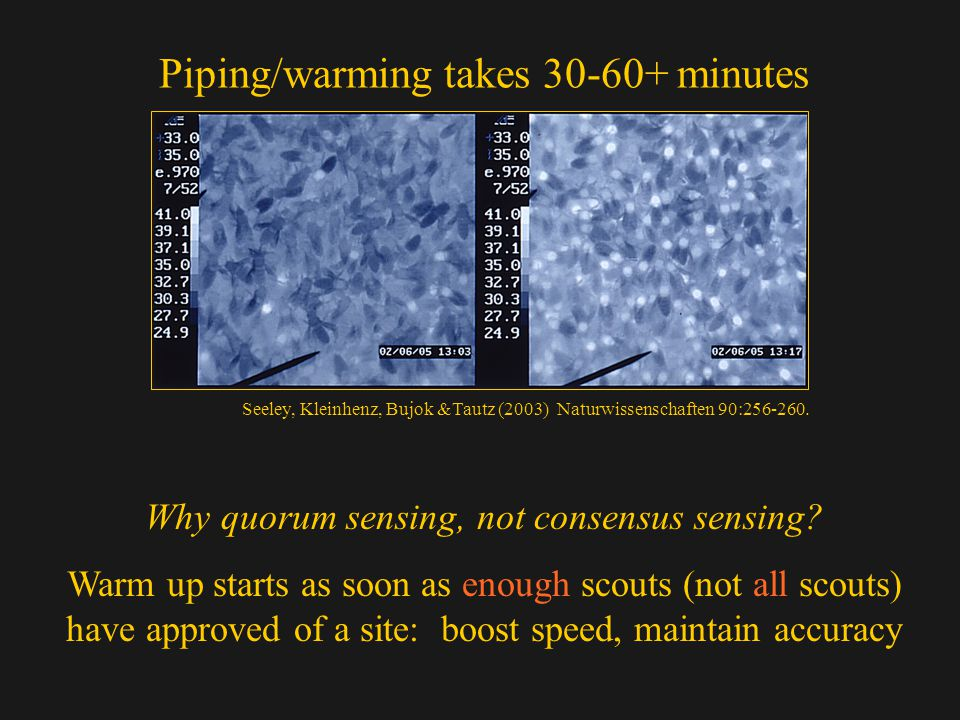 Piping/warming takes 30-60+ minutes Why quorum sensing, not consensus sensing.