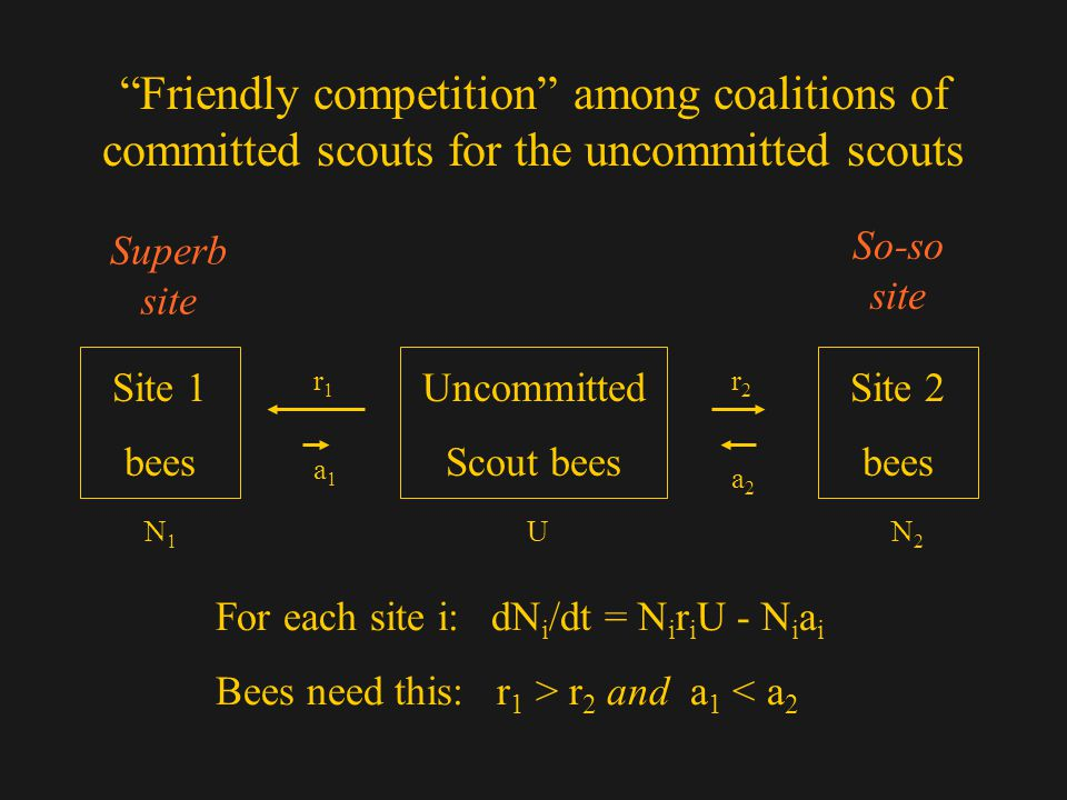 Friendly competition among coalitions of committed scouts for the uncommitted scouts Site 1 bees Uncommitted Scout bees Site 2 bees Superb site So-so