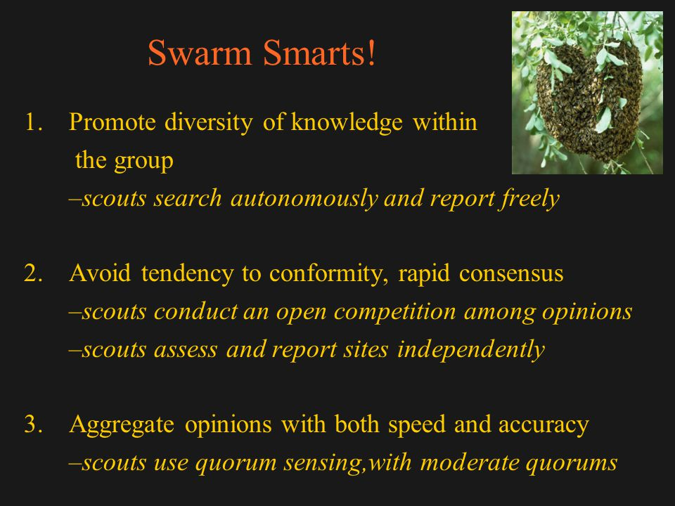 Swarm Smarts! 1.Promote diversity of knowledge within the group –scouts search autonomously and report freely 2.Avoid tendency to conformity, rapid co