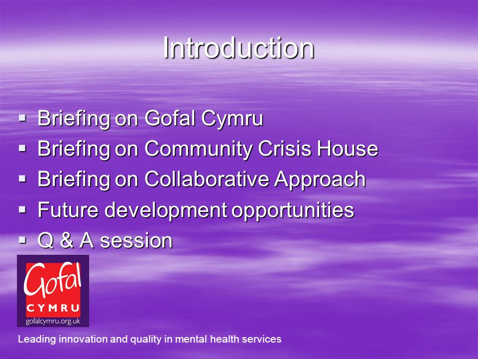 Introduction Briefing on Gofal Cymru Briefing on Gofal Cymru Briefing on Community Crisis House Briefing on Community Crisis House Briefing on Collaborative Approach Briefing on Collaborative Approach Future development opportunities Future development opportunities Q & A session Q & A session Leading innovation and quality in mental health services