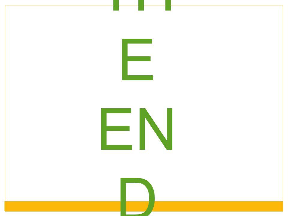 TH E EN D