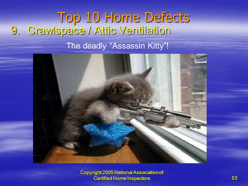 Copyright 2005 National Association of Certified Home Inspectors 53 Top 10 Home Defects 9.Crawlspace / Attic Ventilation The deadly Assassin Kitty!
