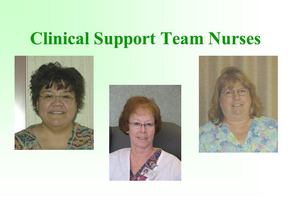 Clinical Support Team Nurses