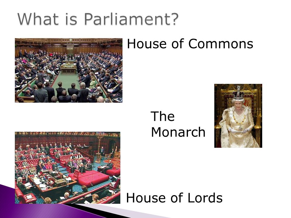 House of Commons House of Lords The Monarch