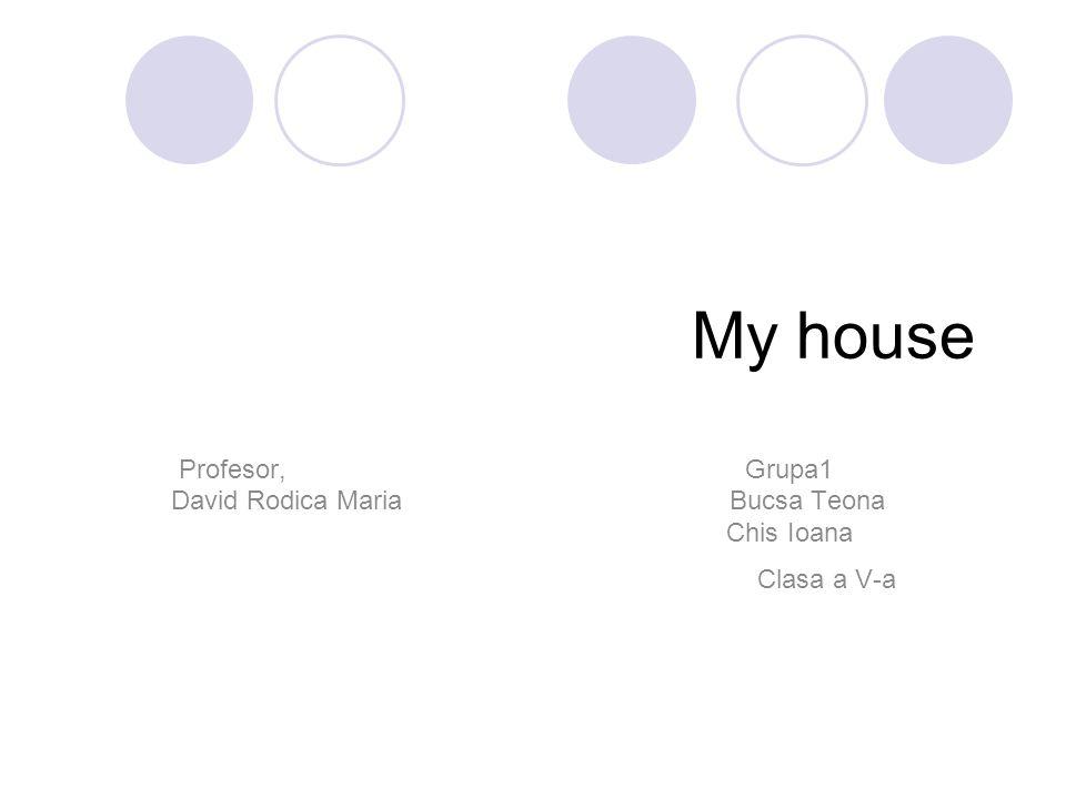 My house Profesor, Grupa1 David Rodica Maria Bucsa Teona Chis Ioana Clasa a V-a