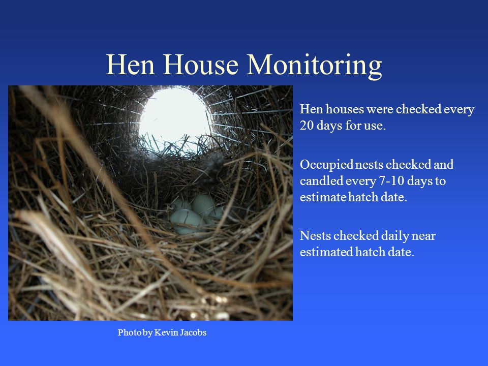Hen House Monitoring Hen houses were checked every 20 days for use.