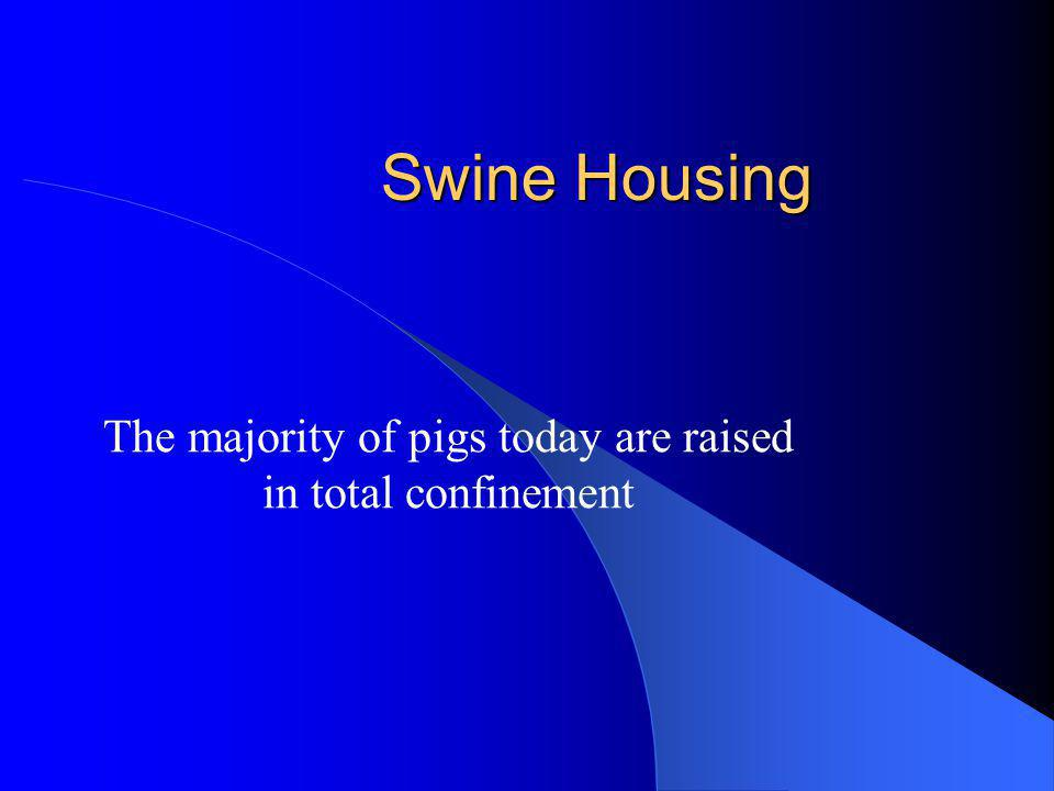 Swine Housing The majority of pigs today are raised in total confinement