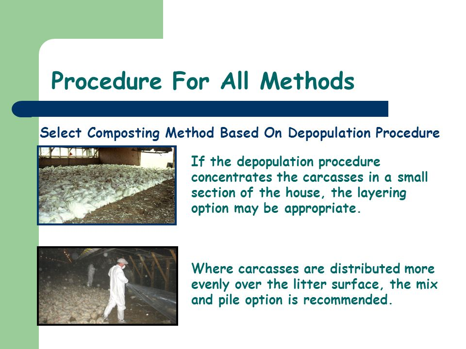 Select Composting Method Based On Depopulation Procedure Procedure For All Methods If the depopulation procedure concentrates the carcasses in a small