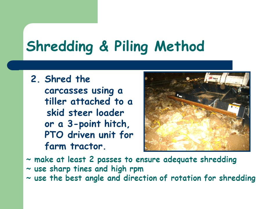 Shredding & Piling Method 2.Shred the carcasses using a tiller attached to a skid steer loader or a 3-point hitch, PTO driven unit for farm tractor. ~