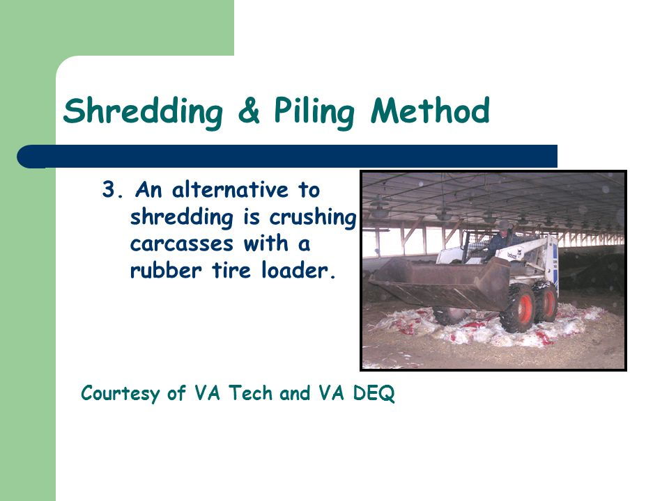 Shredding & Piling Method 3. An alternative to shredding is crushing carcasses with a rubber tire loader. Courtesy of VA Tech and VA DEQ