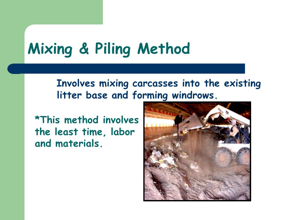 Mixing & Piling Method Involves mixing carcasses into the existing litter base and forming windrows. *This method involves the least time, labor and m