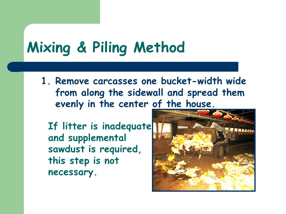 Mixing & Piling Method 1.Remove carcasses one bucket-width wide from along the sidewall and spread them evenly in the center of the house. If litter i