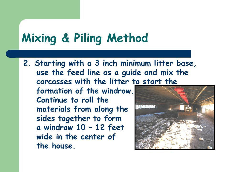 Mixing & Piling Method 2.Starting with a 3 inch minimum litter base, use the feed line as a guide and mix the carcasses with the litter to start the formation of the windrow.