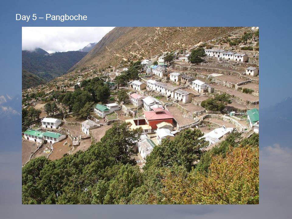 Day 5 – Pangboche