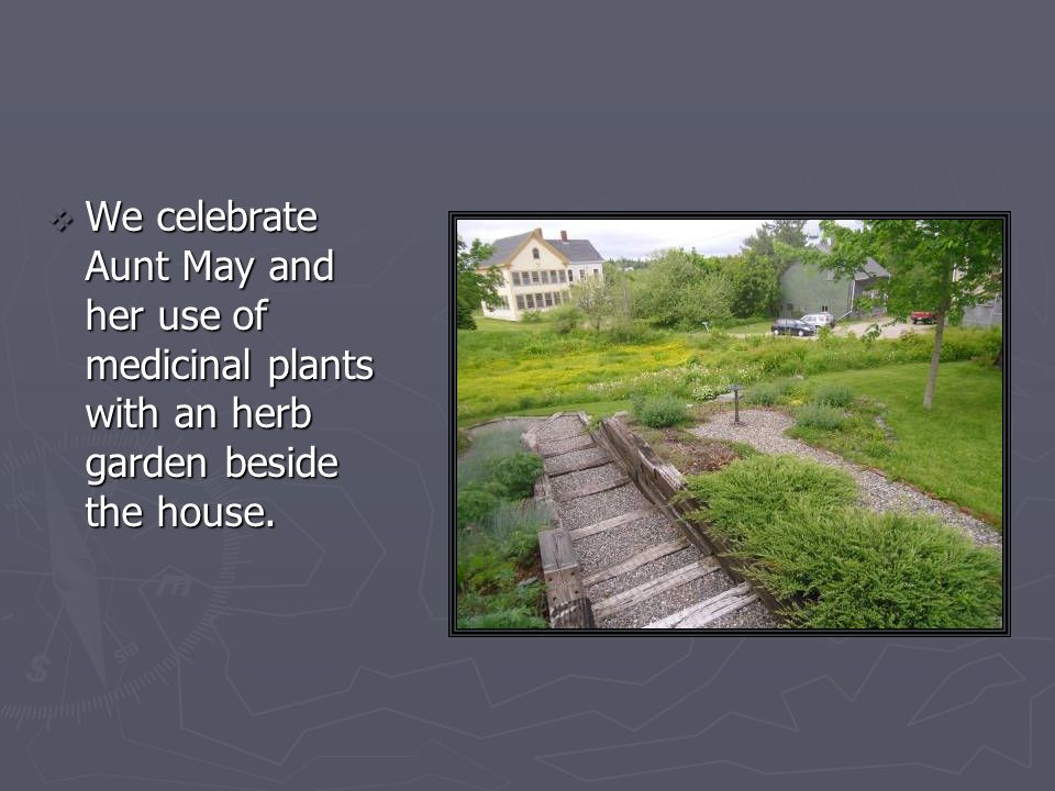 We celebrate Aunt May and her use of medicinal plants with an herb garden beside the house.