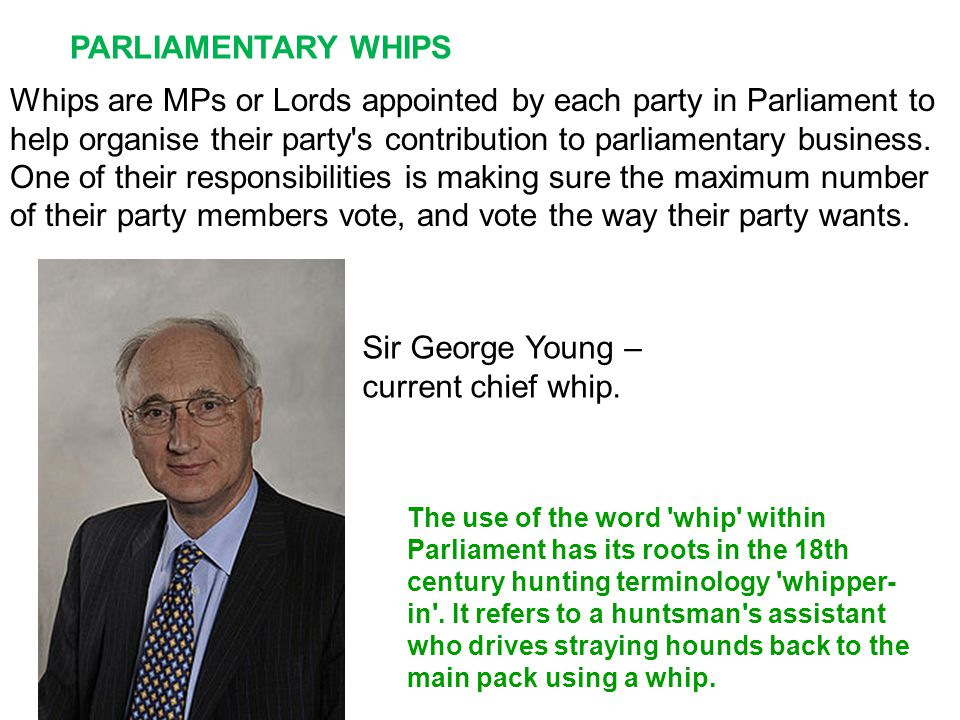 Whips are MPs or Lords appointed by each party in Parliament to help organise their party s contribution to parliamentary business.