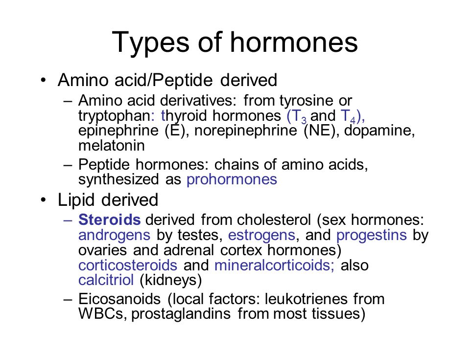 Types of hormones Amino acid/Peptide derived –Amino acid derivatives: from tyrosine or tryptophan: thyroid hormones (T 3 and T 4 ), epinephrine (E), n