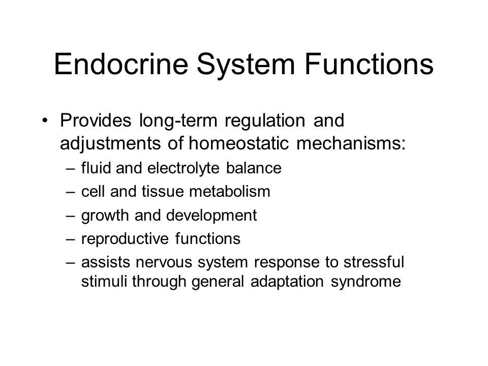 Endocrine System Functions Provides long-term regulation and adjustments of homeostatic mechanisms: –fluid and electrolyte balance –cell and tissue me