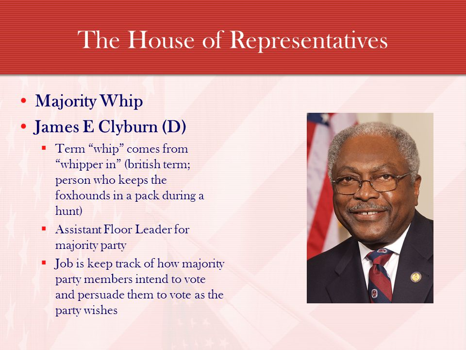 The House of Representatives Majority Whip James E Clyburn (D) Term whip comes from whipper in (british term; person who keeps the foxhounds in a pack during a hunt) Assistant Floor Leader for majority party Job is keep track of how majority party members intend to vote and persuade them to vote as the party wishes