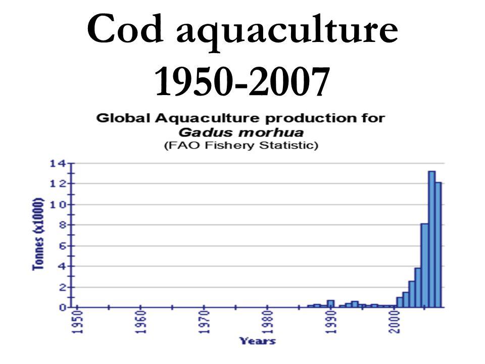Cod aquaculture 1950-2007