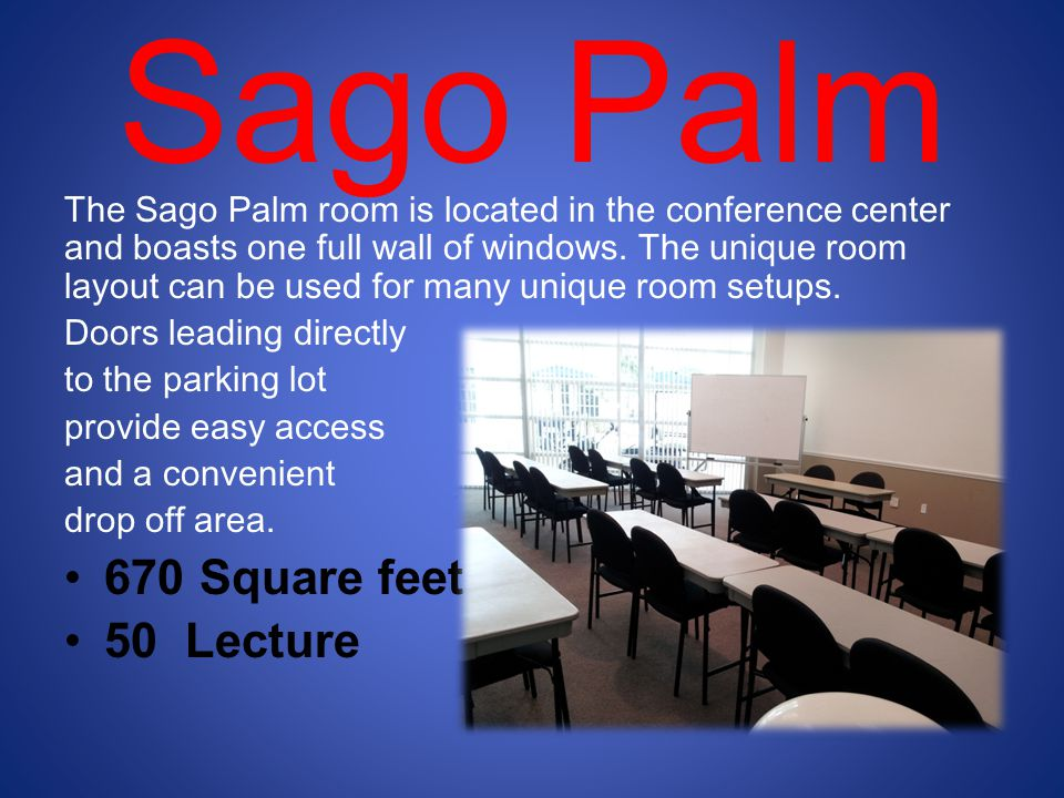 Sago Palm The Sago Palm room is located in the conference center and boasts one full wall of windows.
