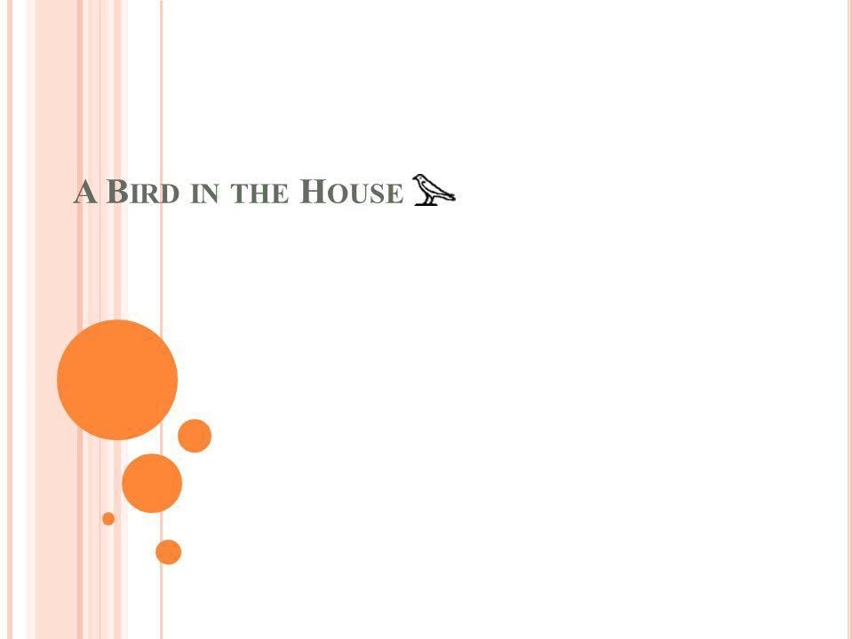 A B IRD IN THE H OUSE