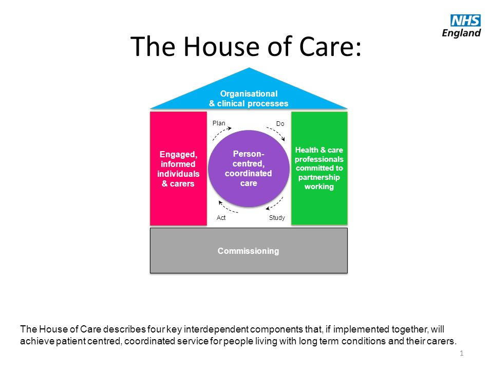 1 Engaged, informed individuals & carers Commissioning Organisational & clinical processes Organisational & clinical processes Person- centred, coordi