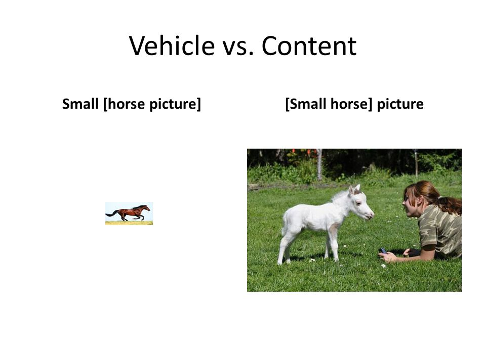 Vehicle vs. Content Small [horse picture][Small horse] picture
