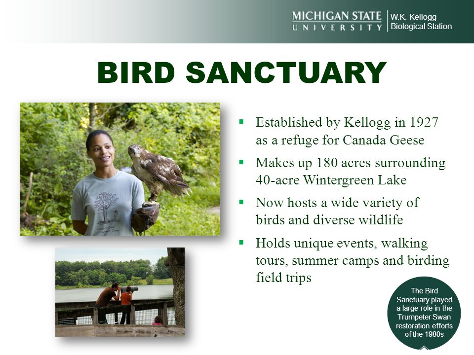 W.K. Kellogg Biological Station BIRD SANCTUARY Established by Kellogg in 1927 as a refuge for Canada Geese Makes up 180 acres surrounding 40-acre Wint