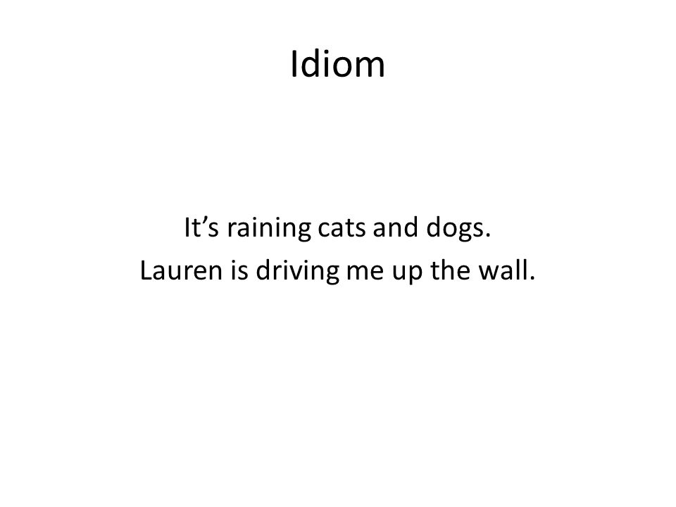 Idiom Its raining cats and dogs. Lauren is driving me up the wall.