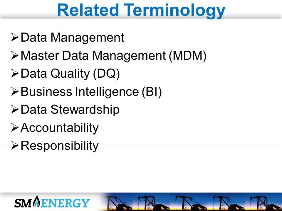 Related Terminology Data Management Master Data Management (MDM) Data Quality (DQ) Business Intelligence (BI) Data Stewardship Accountability Responsibility