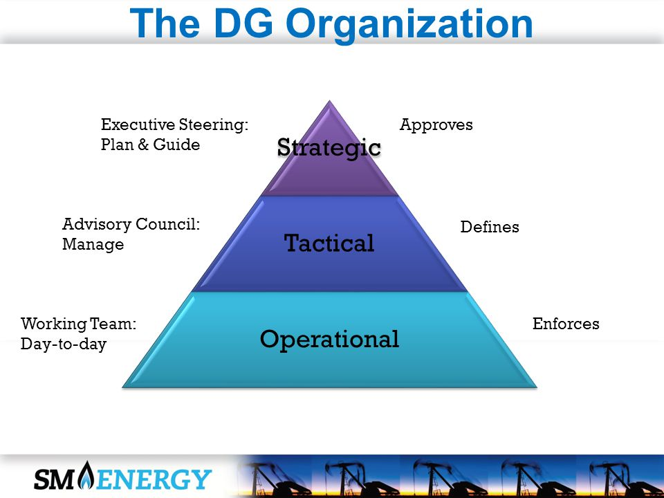 The DG Organization Strategic Tactical Operational Executive Steering: Plan & Guide Advisory Council: Manage Working Team: Day-to-day Approves Defines