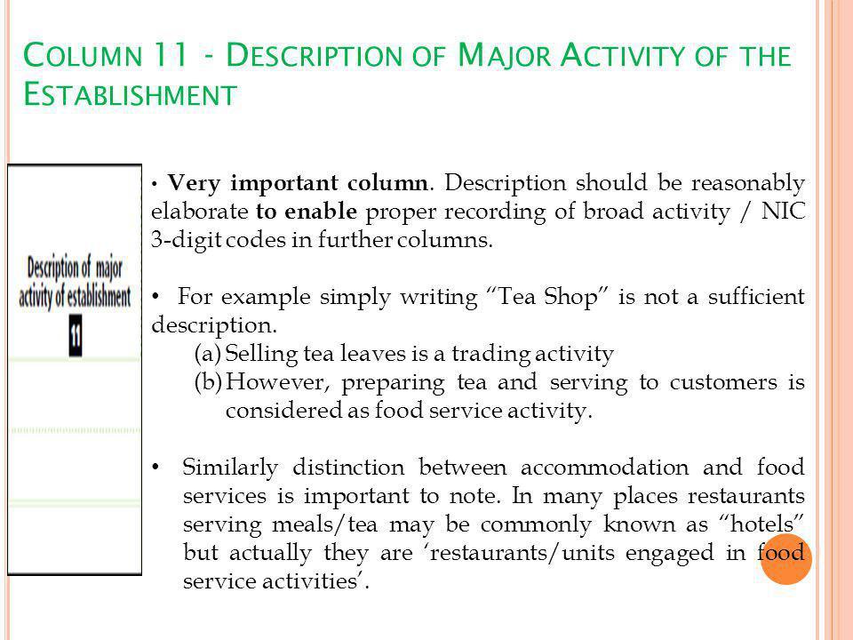 C OLUMN 11 - D ESCRIPTION OF M AJOR A CTIVITY OF THE E STABLISHMENT Very important column.