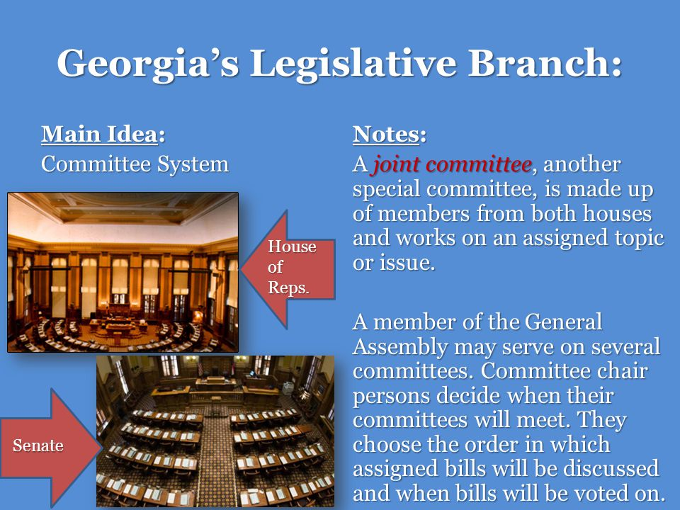 Georgias Legislative Branch: Main Idea: Committee System Notes: A joint committee, another special committee, is made up of members from both houses a