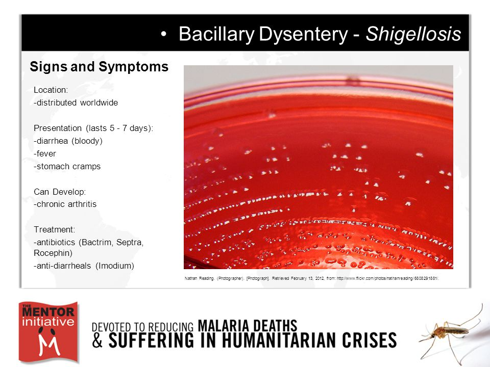 Signs and Symptoms Bacillary Dysentery - Shigellosis Location: -distributed worldwide Presentation (lasts 5 - 7 days): -diarrhea (bloody) -fever -stomach cramps Can Develop: -chronic arthritis Treatment: -antibiotics (Bactrim, Septra, Rocephin) -anti-diarrheals (Imodium) Nathan Reading.