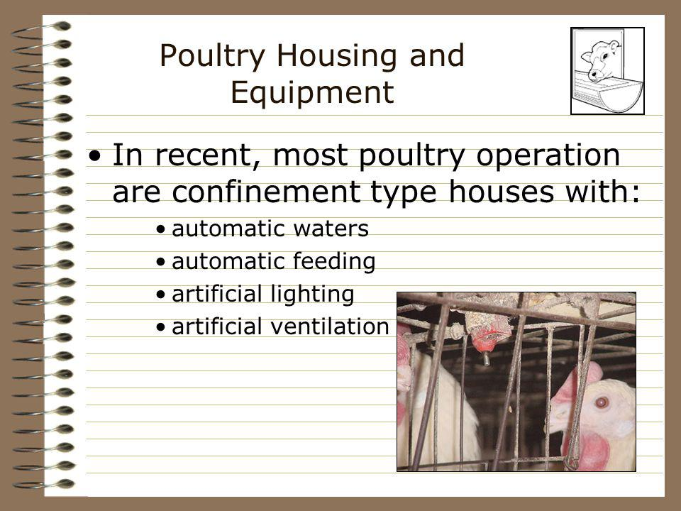 Poultry Housing and Equipment In recent, most poultry operation are confinement type houses with: automatic waters automatic feeding artificial lighti