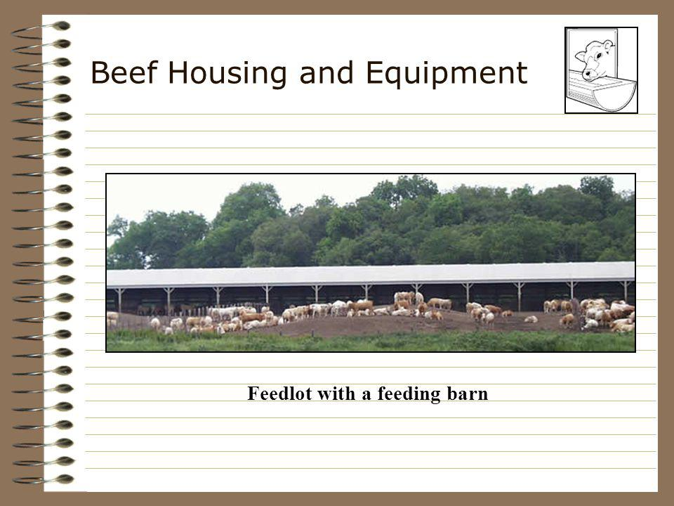 Beef Housing and Equipment Corrals –Needed for all types of beef cattle enterprises –Holding pen, working chute and headgate easier to handle reduces labor saves time reduces stress safer for the workers and cattle
