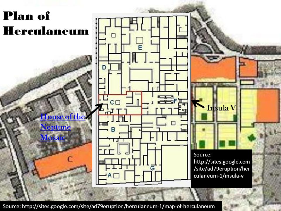 Plan of Herculaneum Source: http://sites.google.com/site/ad79eruption/herculaneum-1/map-of-herculaneum Insula V House of the Neptune Mosaic Source: ht