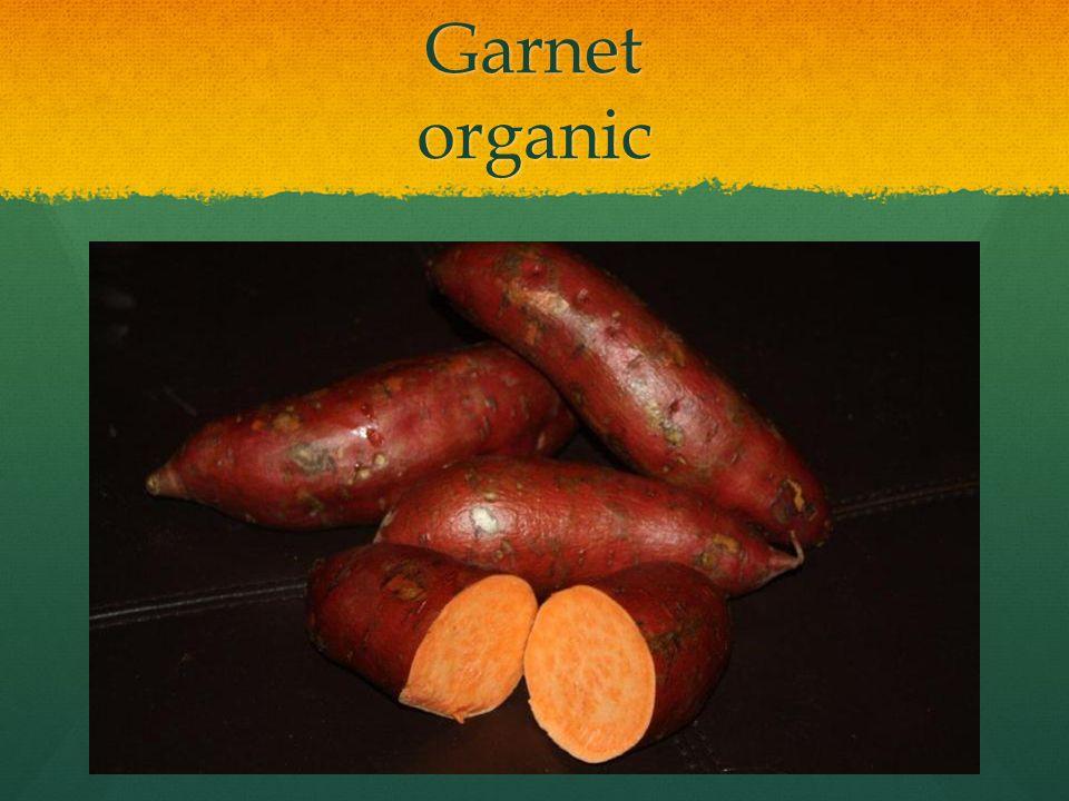 Garnet organic