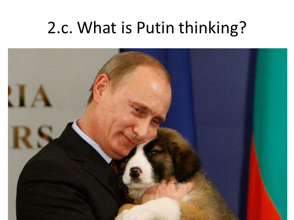 2.c. What is Putin thinking?