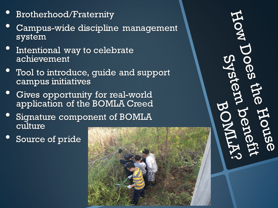 How Does the House System benefit BOMLA? Brotherhood/Fraternity Brotherhood/Fraternity Campus-wide discipline management system Campus-wide discipline