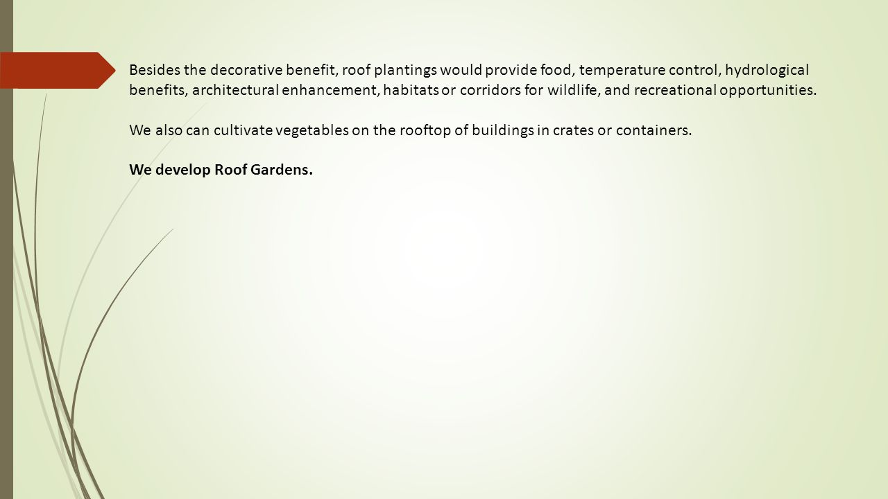 Besides the decorative benefit, roof plantings would provide food, temperature control, hydrological benefits, architectural enhancement, habitats or corridors for wildlife, and recreational opportunities.